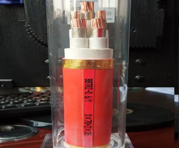 柔性防火电缆BBTRZ