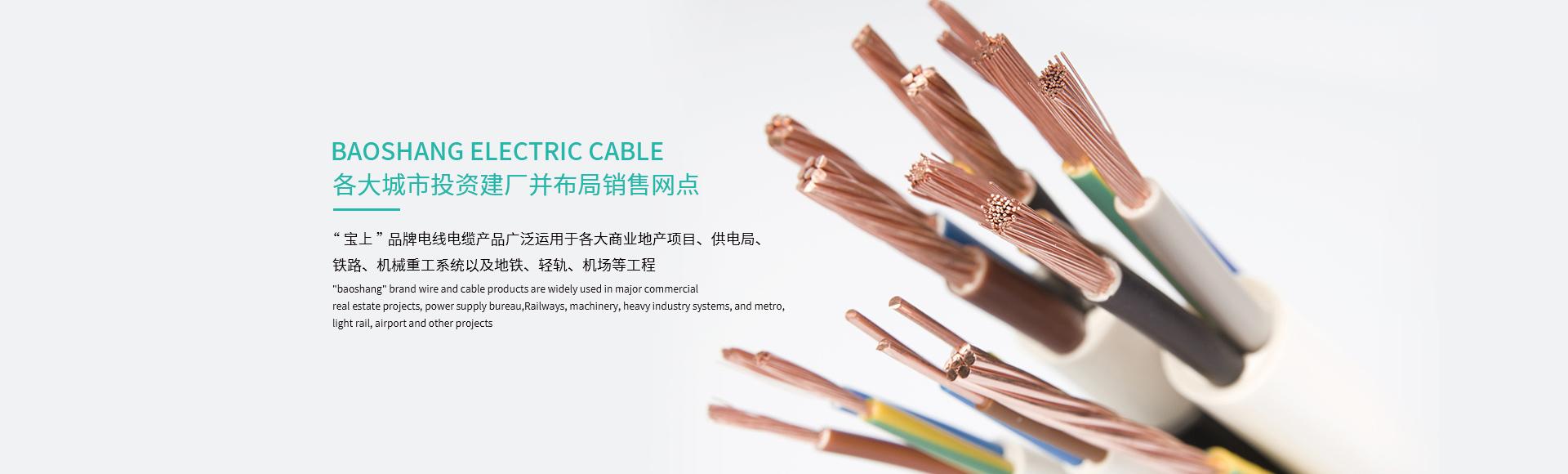 重庆电线电缆厂